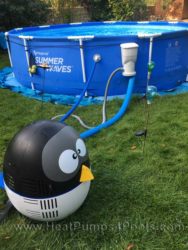 thermotec-penguin-customer-photo-1